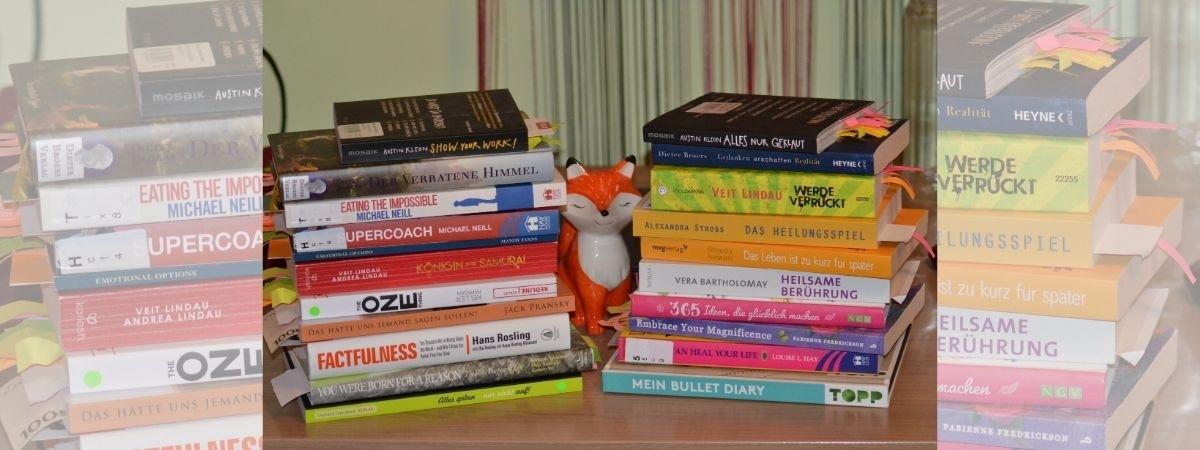 Bücher, die ich gelesen habe