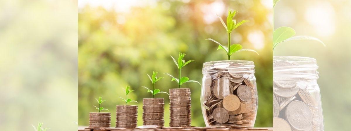 Pflanzen wachsen aus Geld