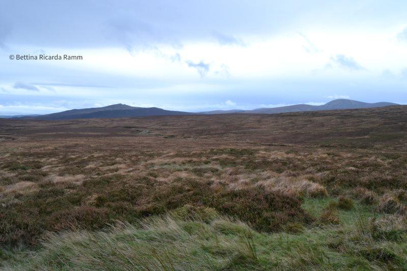 Blick über die Hochebenen Wicklow Mountains